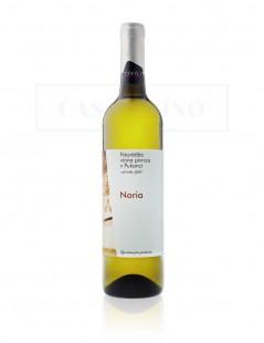 Najväčšia vínna pivnica v Pukanci - Noria