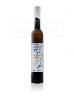 Najväčšia vínna pivnica v Pukanci - Muškát Moravský slamové