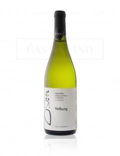 Najväčšia vínna pivnica v Pukanci - Velburg